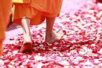 仏陀の教え、その宇宙観は量子力学の理論を遥かに超えていた!
